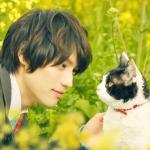 旅猫リポート 映画感想・評価・レビュー