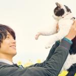 旅猫リポート動画フルを無料視聴!